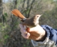 Vogelringgroep Eastermar